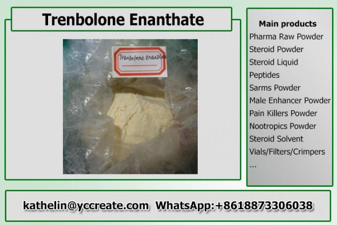 Steroid Hormone Powder Trenbolone Enanthate Steroid Raw Powder For Bodybuilding