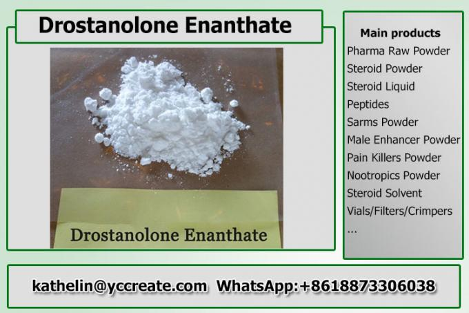 Steroid Hormone Powder Drostanolone Enanthate / Masteron Enanthate For Muscle Gains