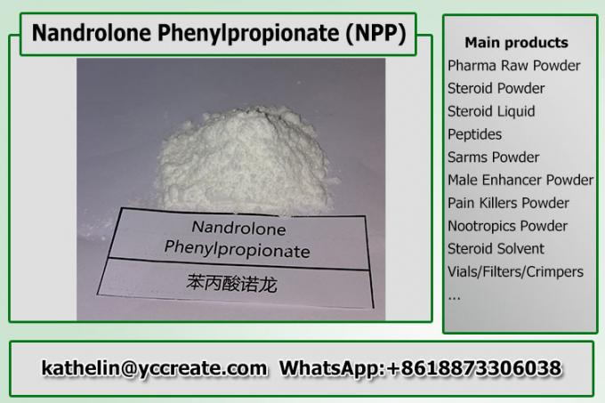 Injectable Hormone Nandrolone Steroid  NPP / Nandrolone Phenylpropionate For Bodybuilding 62-90-8
