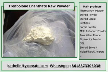 China Steroid Hormone Powder Trenbolone Enanthate Steroid Raw Powder For Bodybuilding supplier