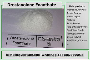 China Steroid Hormone Powder Drostanolone Enanthate / Masteron Enanthate For Muscle Gains supplier