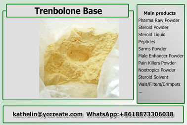 China Steroid Hormone Powder Trenbolone Base / Tren Base  Steroid Raw Powder For Bodybuilding distributor